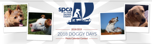 Doggy Days Photo Calendar Contest 2018/2019