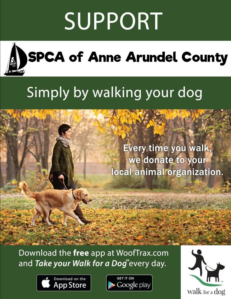 support the spca simply by walking your dog start walking