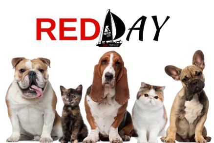 RedDay!