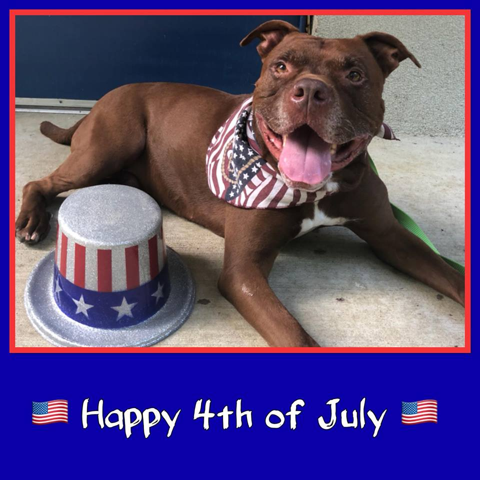 July 4th – Closed