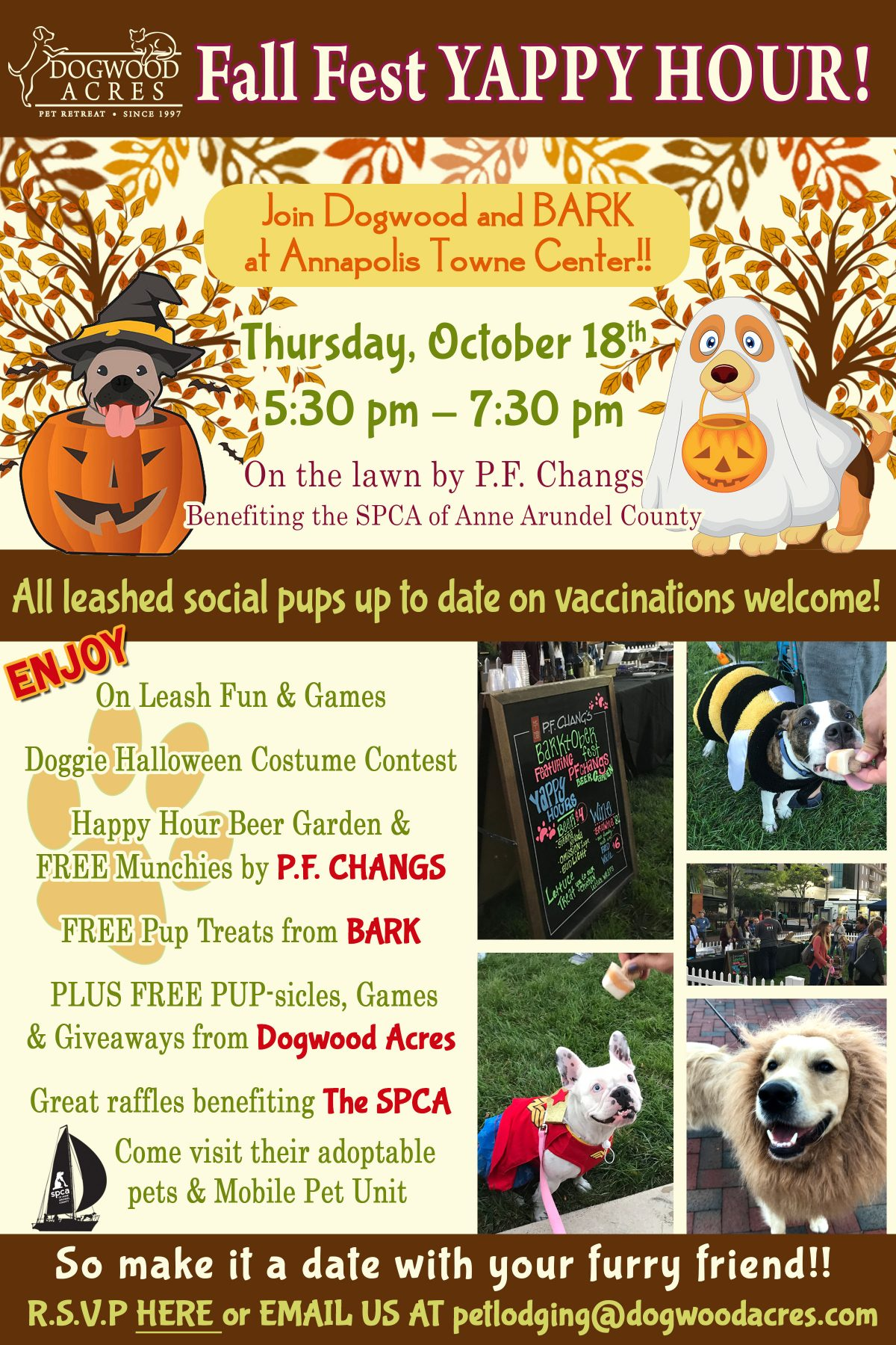 Yappy Hour – 10/18