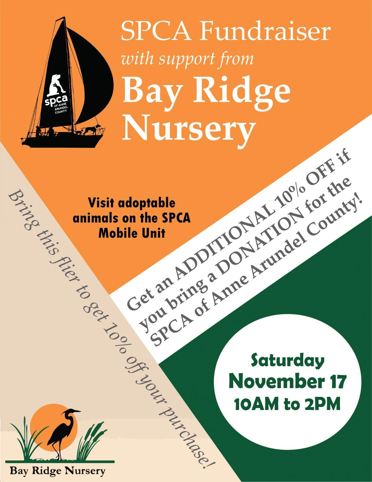 Bay Ridge Nursery – 11/17