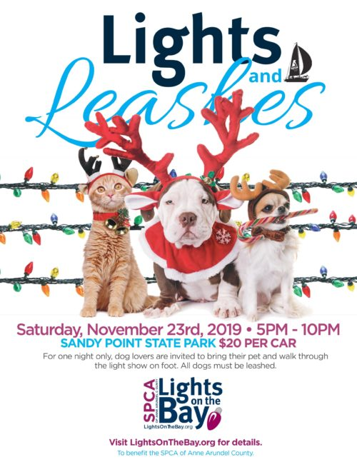 Lights & Leashes – 11/23