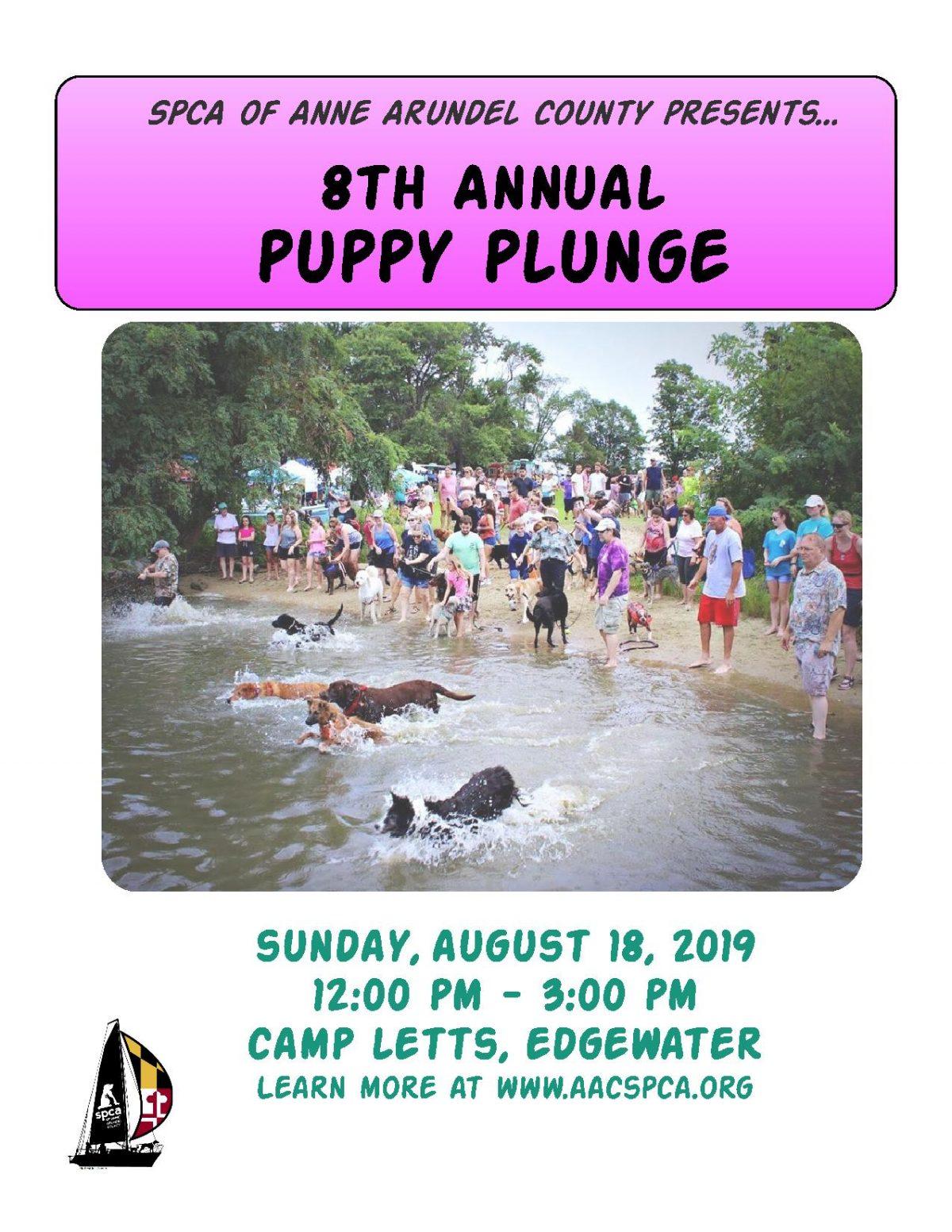 Puppy Plunge – 8/18