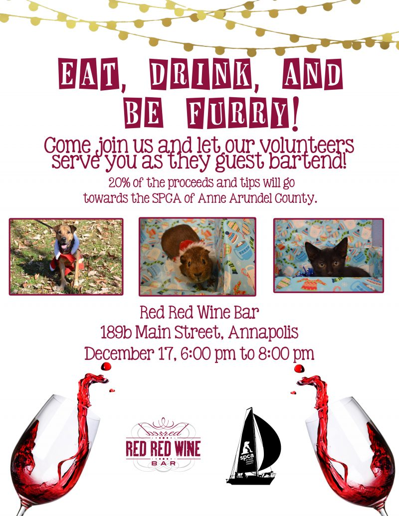 Red Red Wine Bar – 12/17