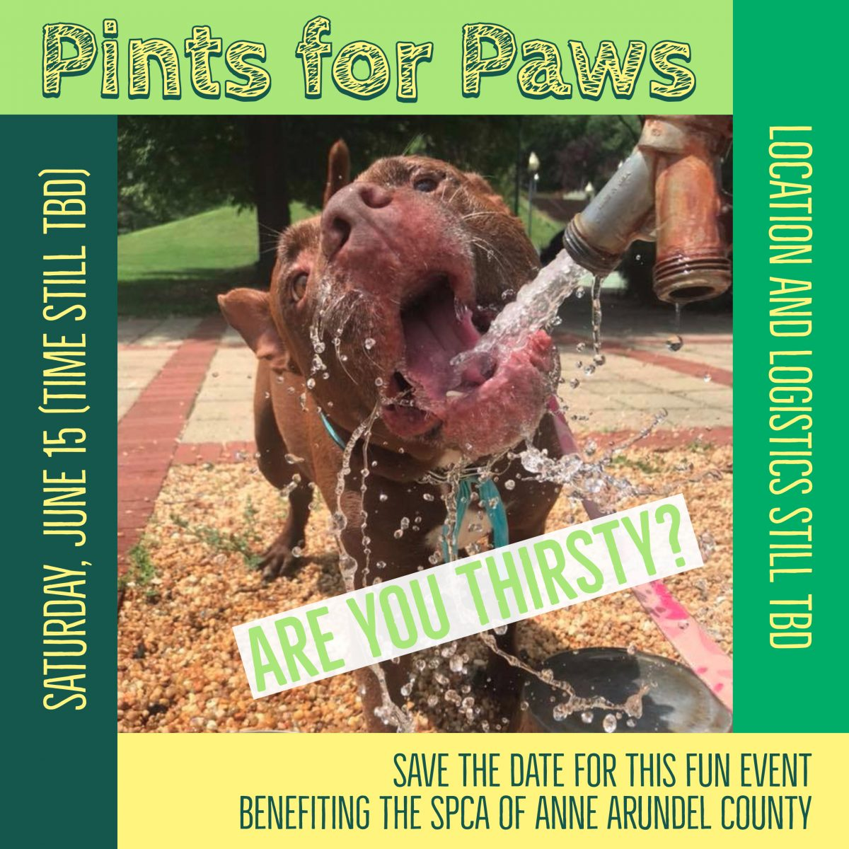 Pints For Paws, Save The Date