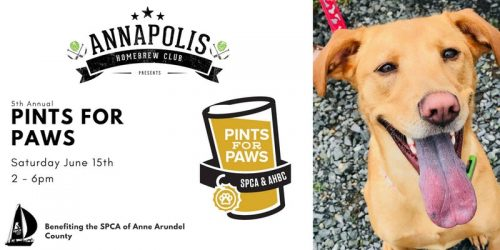 Pints For Paws – 6/15