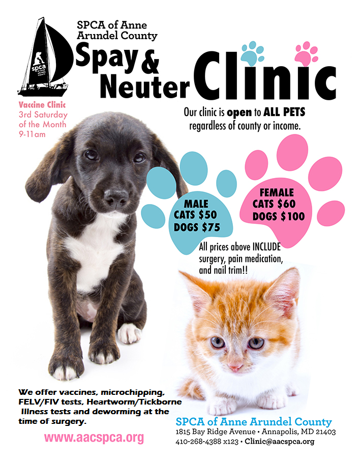 Spay/Neuter Clinic – SPCA of Anne Arundel County