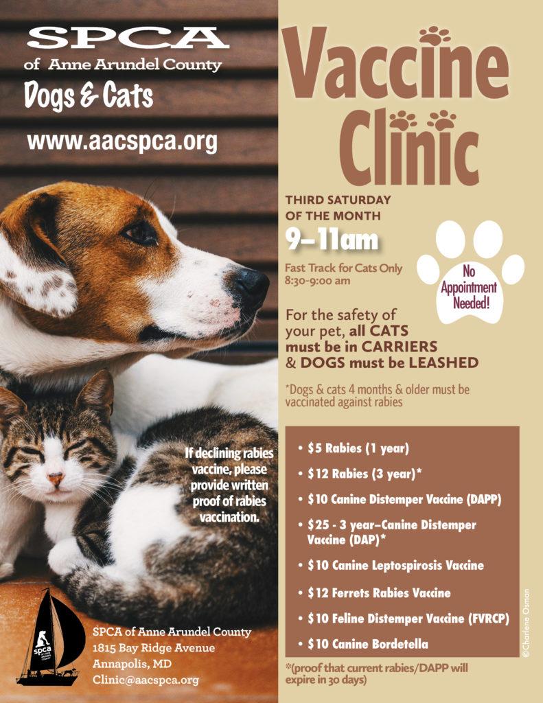 canine distemper shot cats
