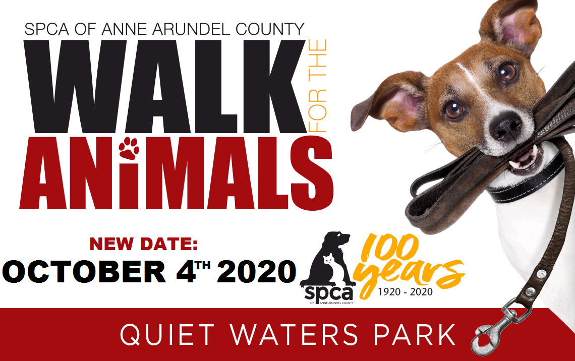 Walk for the Animals – 10/4