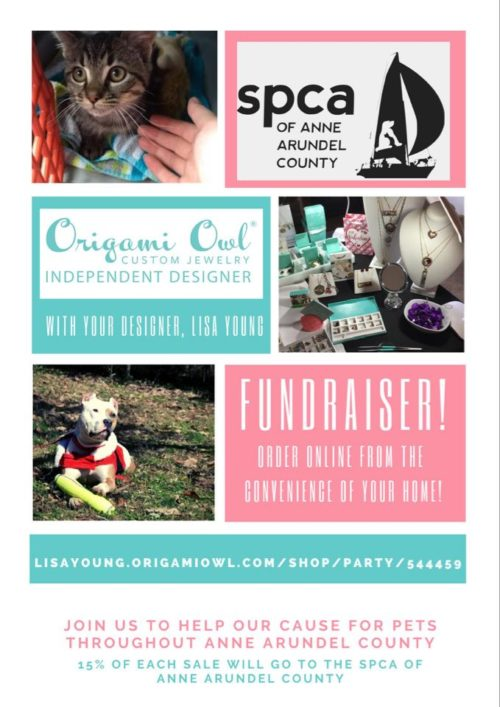 Origami Owl – March Fundraiser