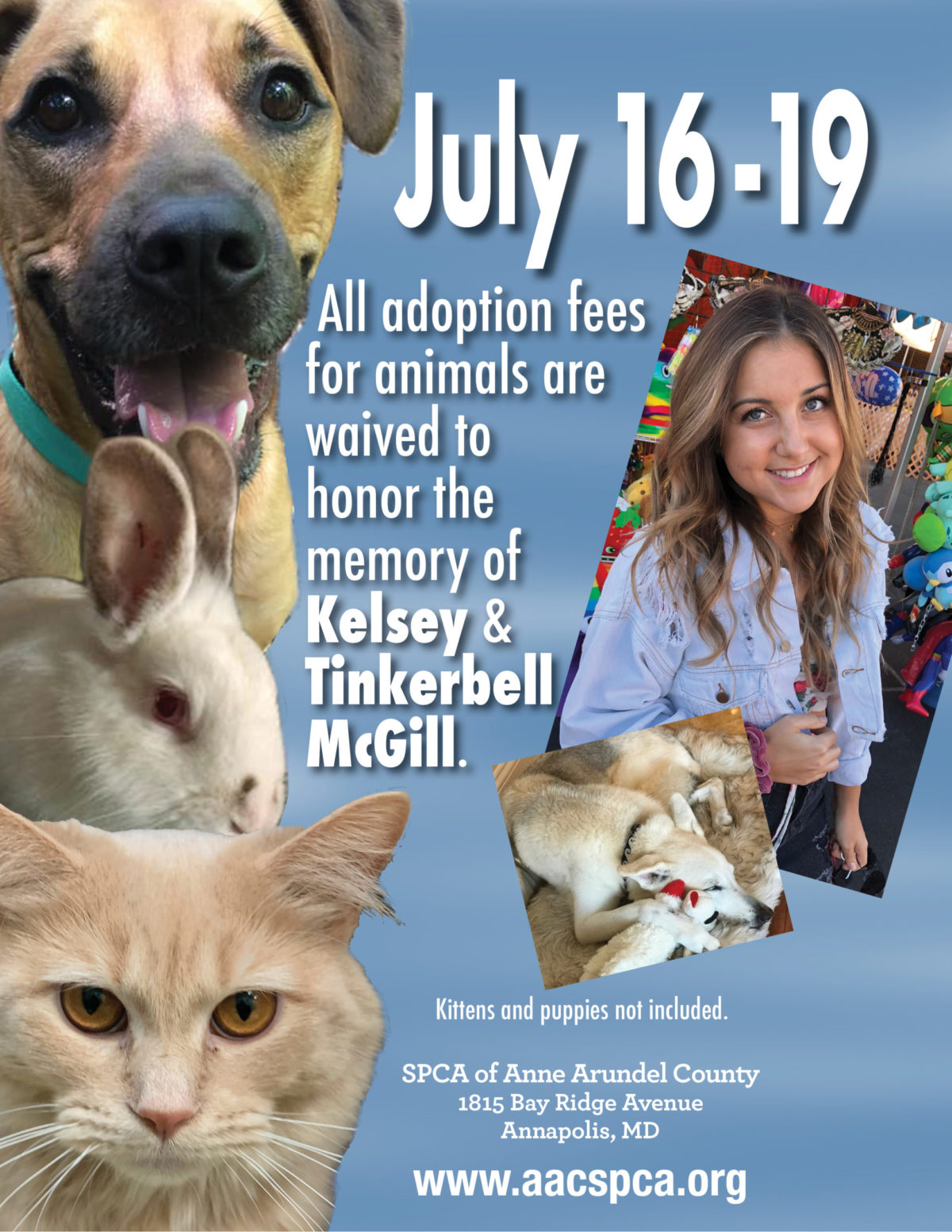 Adoption Fees Covered 7/16-19