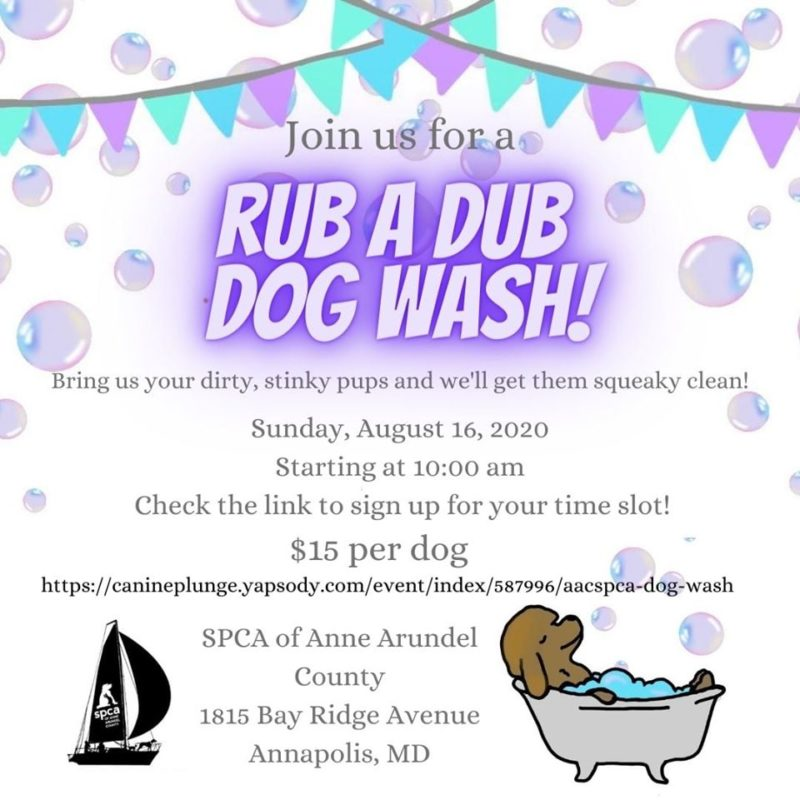 Rub A Dub Dog Wash – 8/16