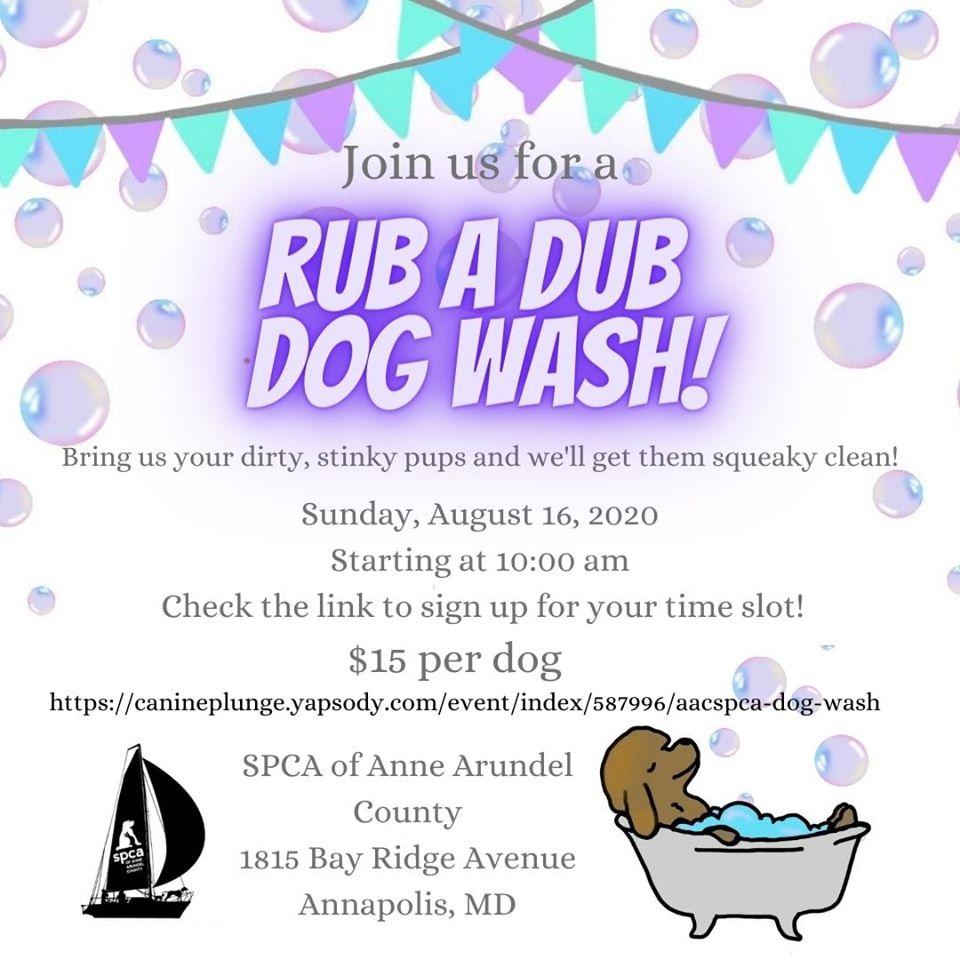 Rub A Dub Dog Wash – 8/16