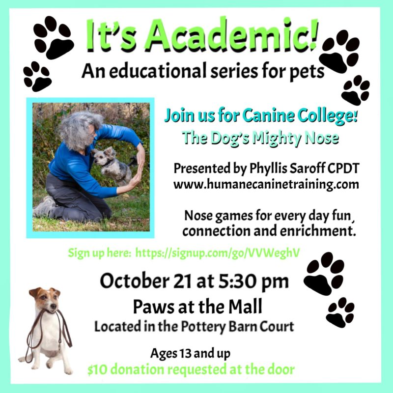 It's Academic! at Paws at the Mall