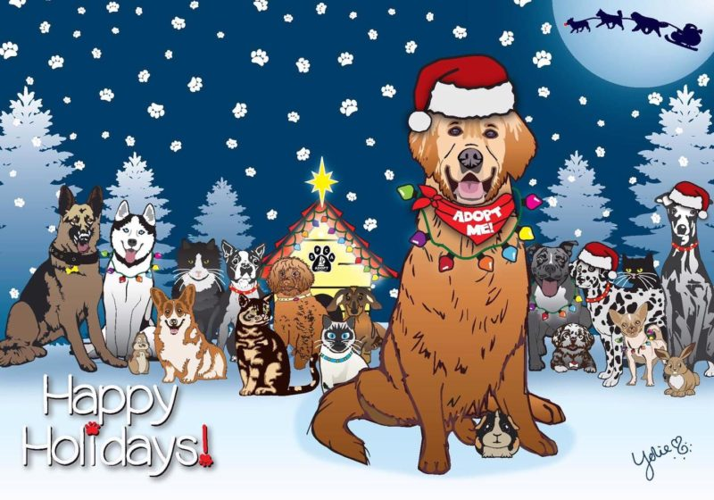 SPCA Holiday Cards are available!