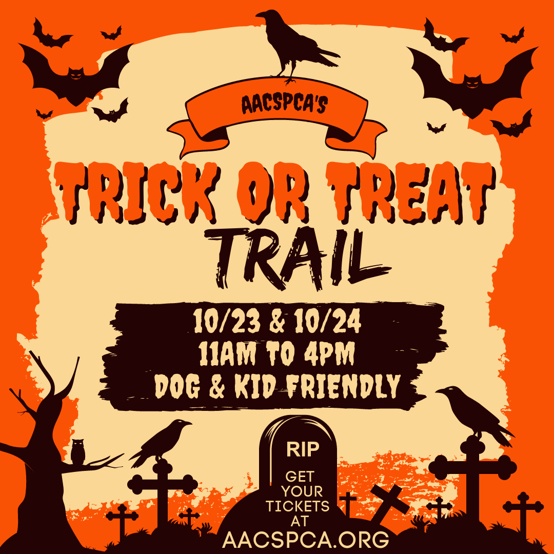 Trick or Treat Trail – 10/23 & 10/24