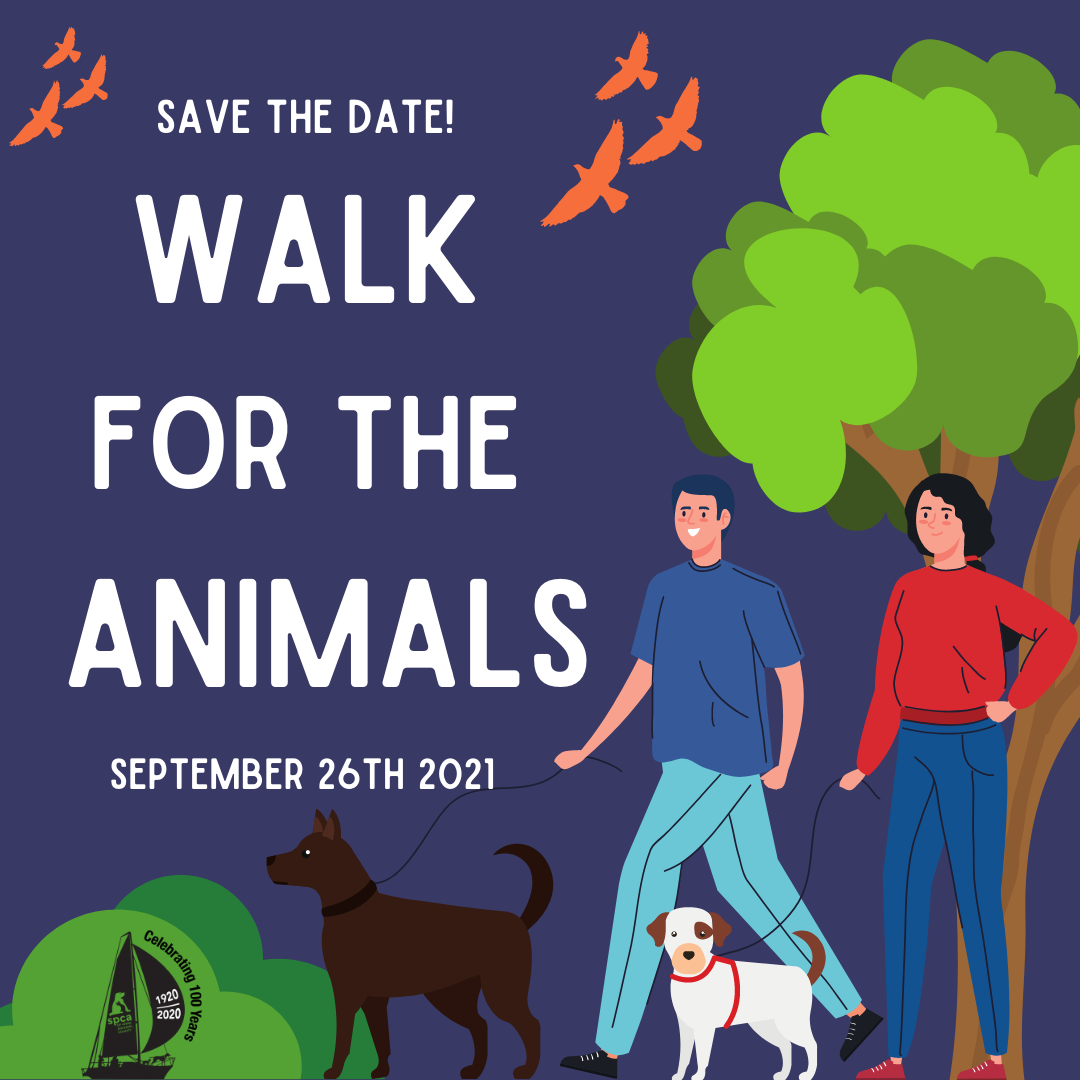 Walk for the Animals – 9/26