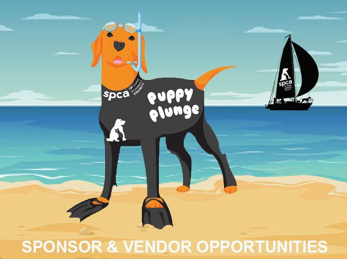 Puppy Plunge Sponsorships now available!
