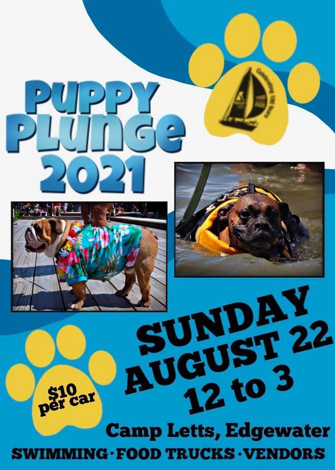 Puppy Plunge – 8/22